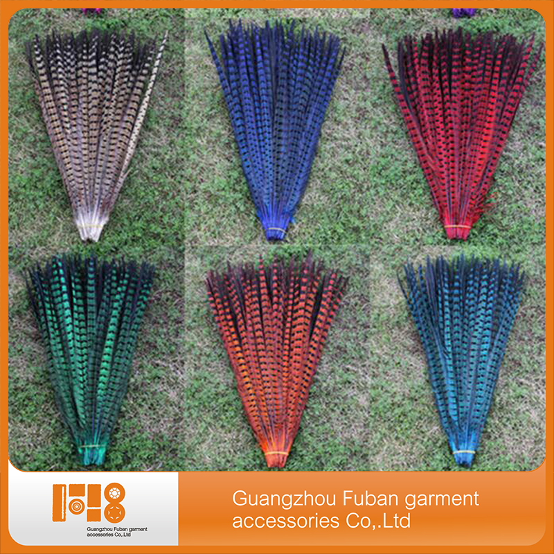 Colorful pheasant Performance Stage tail feathers