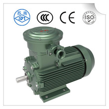 Professional big power three phase ac electric motor with low price