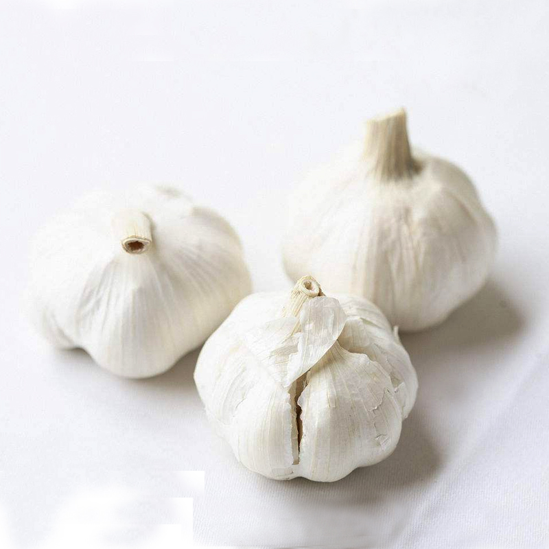 The Year Round Supply Jiangsu Fresh Natural Pure White Garlic Wholesale 2018 Garlic Price