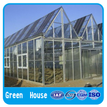 cheap price commercial plastic film greenhouse for sale