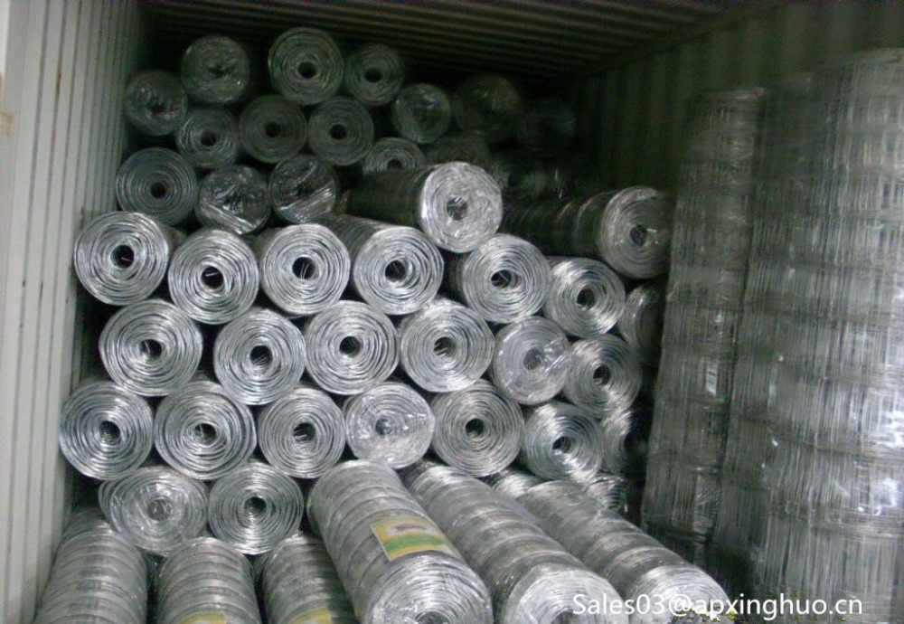 Concrete Reinforced Steel Bar Welded Wire Mesh