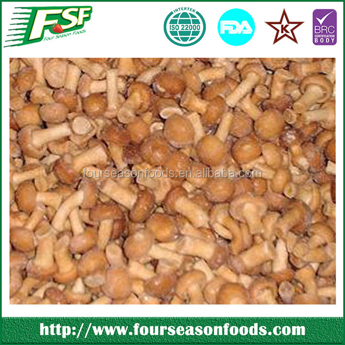 Newest hot selling fresh champignon