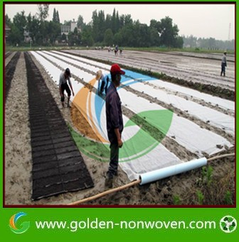 Agricultural 3%UV nonwoven fabric, PP non woven row cover, agriculture mulch film