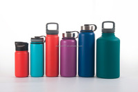 2017 Sports insulated double walled stainless steel bottle