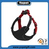 Fashion design factory wholesale pet harness dog body harness