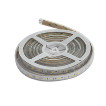 Wholesale price dc12v/24v waterproof IP67 5050 RGB LED strip for swimming pool lighting