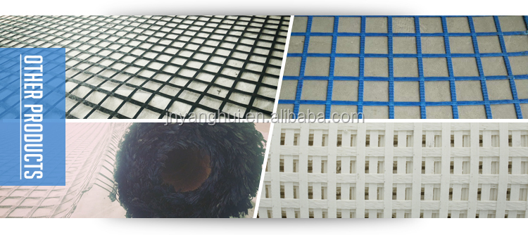 Great Quality Poliester Ceiling Geogrid
