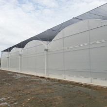 Hydroponics growing systems agriculture greenhouse vegetables growing system