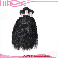 100% Human Virgin Indian Hair Afro Kinky Human Hair For Braiding