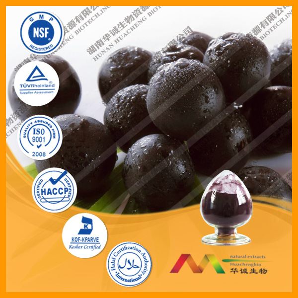 NSF-GMP Aduited TOP 10 Factory Hot Sell Acai berry extract 20:1
