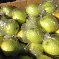 Types of green apple bulk fresh green delicious jin guan apples