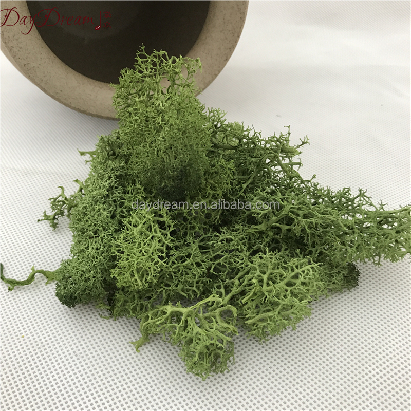 Green color preserved fresh moss grass real moss wall decoration moss