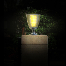 CE ROHS FCC Approved IP65 Solar Power Garden Decorative Light Product