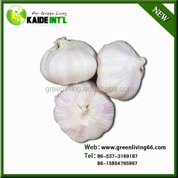2014 China garlic price hot sale(4.5cm,5cm,5.5cm.6cm up)