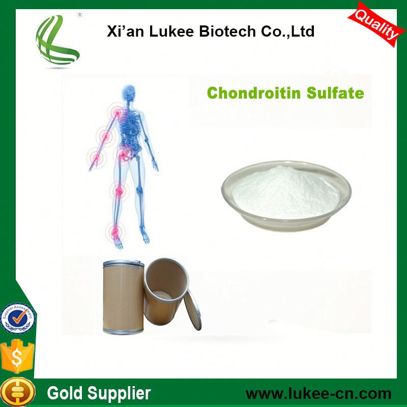 99% purity Pharmaceutical raw material chondroitin sulphate 9082-07-9