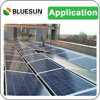 Bluesun best price professional engineer design on-grid 10mw solar system