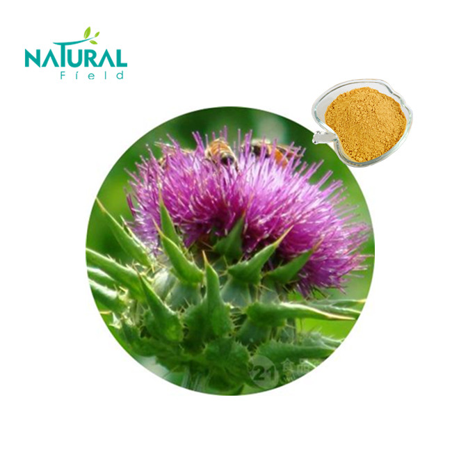Pure Natural Milk Thistle Extract Silybin+Isobilybin by HPLC