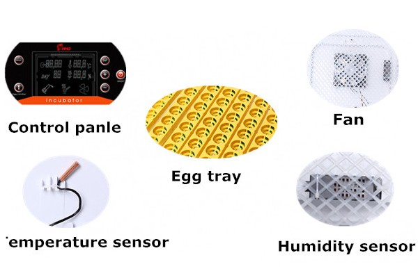 Latest product automatic mini chicken egg incubator on promotion HT-32S