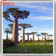 Customized artificial baobab tree for sale artificial trees ornamental trees