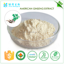 manufacturers of pharmaceutical formulations medicine manufacturers in china American ginseng extract ginsenosides 80%