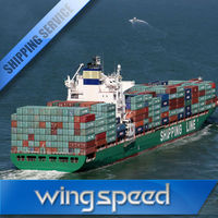 China professional shipping company/shipping agent/freight forwarder