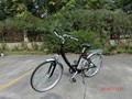 250W 36V 10AH chinese electric bike