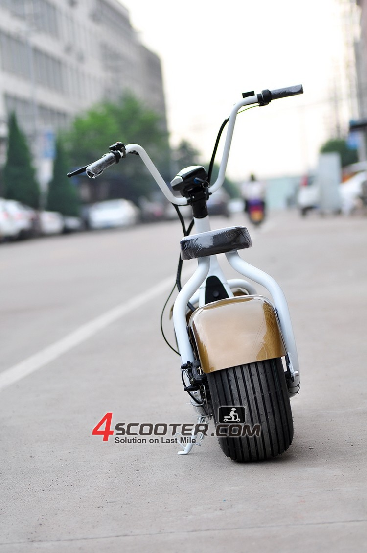 Citycoco/seev/woqu popular city 2 wheels off road electric scooter for sale