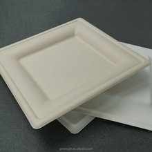 Biodegradable sugarcane bagasse square paper plate