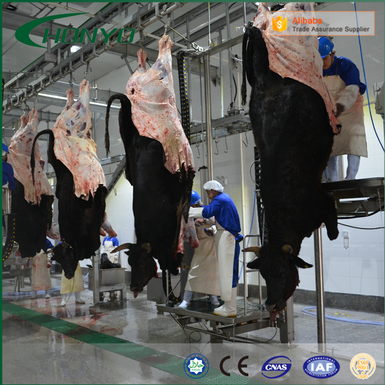 Halal Stainless Steel Cattle Slaughtering Line Equipment For Slaughterhouse