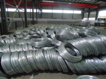 Raw Material (Wire Mesh)