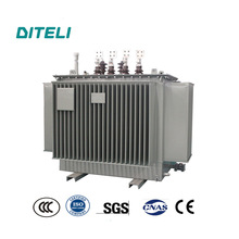 22kV 250kva Oil Immersed Step Down Power Transformer