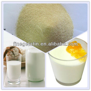Gelatin Powder In Granules/Milk Powder Gelatin/Bovine Bone Halal Gelatin