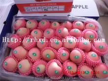 2015 Chinese Golden Delicious Fresh Apple fruit/Chines fresh fuji apple/organic fuji apples fruit