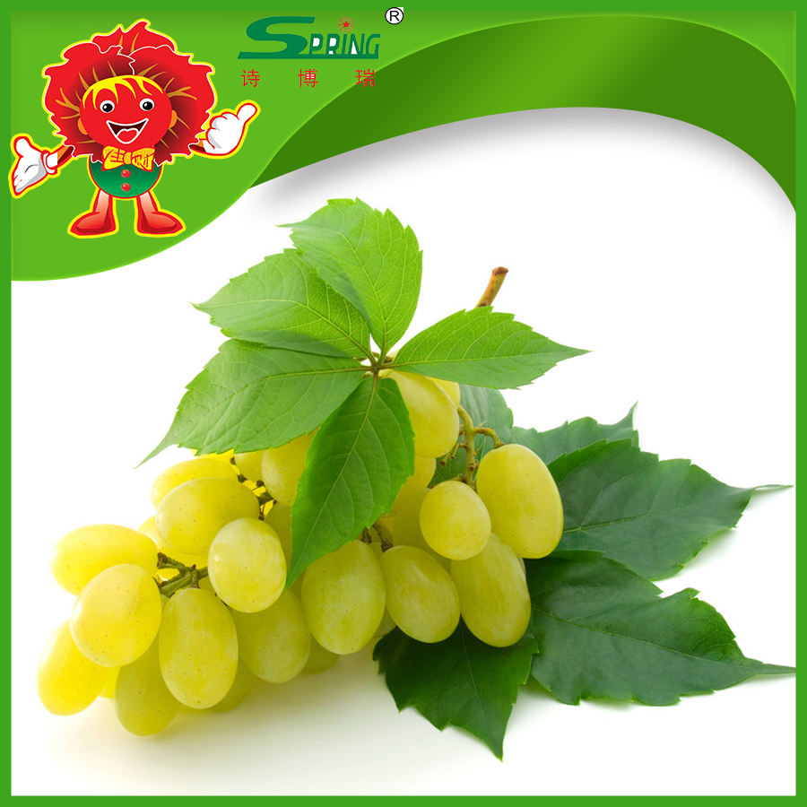 Fresh white/green globe grapes for sale