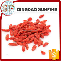 Fresh dried goji berries