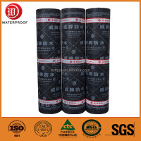 Polyester Mat SBS Modified Bitumen Waterproof Membrane for Roof and Wall