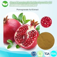 GMP quality pure natural Pomegran Peel Extract with 90% Ellagic acid, 40% Punicalagin