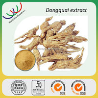 Angelica extract free sample for trial HACCP KOSHE FDA manufacturer gynecology health 1% ligustilide angelica root extract