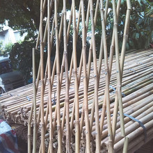 Clean dry straight cheap treated bleached Bamboo poles for sales