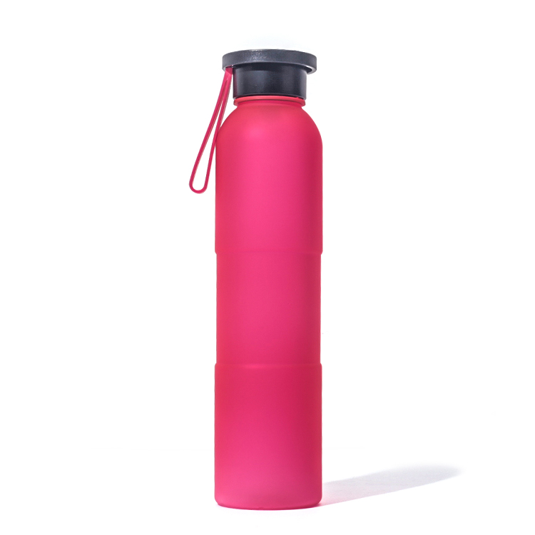 Fashion 500ml plastic sports water bottle Lemon Juice water bottle