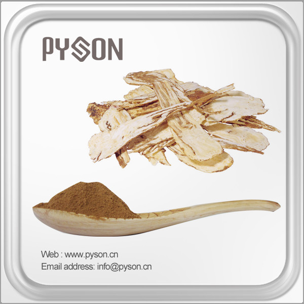 China supplier high quality Angelica P.E. / Dong Quai root Extract