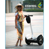 outdoor sports New version 2 wheel electric scooters ,1000 watts scooters for adults have stock