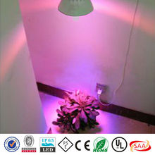 energy saving good quality 100x3w high power led grow light diode