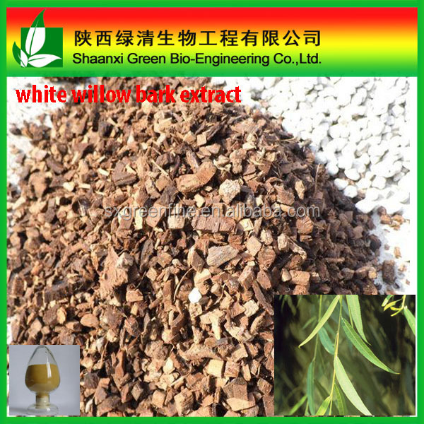 Natural Herbal medicine White Willow Bark Extract, Salicin 15% , Salicin 25% with GMP manufacture