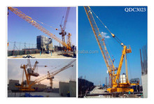 Manufacturer Directly Supply Derricking Crane ISO9001