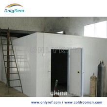 Negative freezer room, cold storage project cost