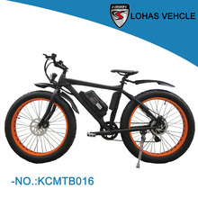 2016 new product 36V 250W high quality fat electric bike