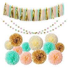 Party favor Background decoration Kit Tissue Paper Pom Poms Flowers Kit