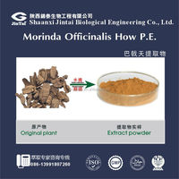 High quality Natural Morinda root extract