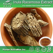 Top Quality Factory Price Inula Racemosa Powder (P.E.), Inula Racemosa